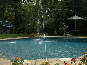 Baker Pool Construction Traditional Waterscape