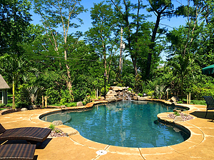 st. louis custom designed concrete pool with waterfall and palm trees