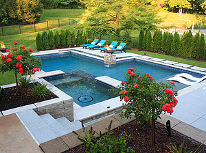 geometric st. louis custom designed concrete pool with spa, fire bowls, rose trees and natural privacy screen of emerald green arborvitae