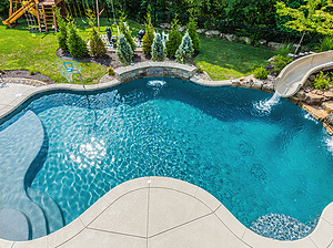 freeform st. louis custom designed concrete pool with slide and sheer descent, natural privacy screen blocking equipment pad