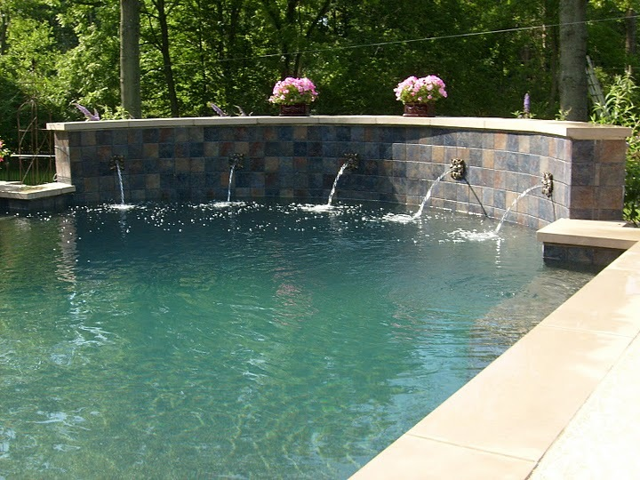 Baker Pool Construction Stunning Symmetry
